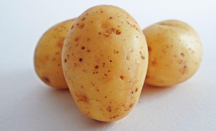 Genovese napoletana patata