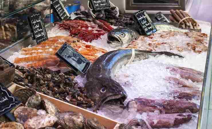 Cosa mettere zuppa pesce