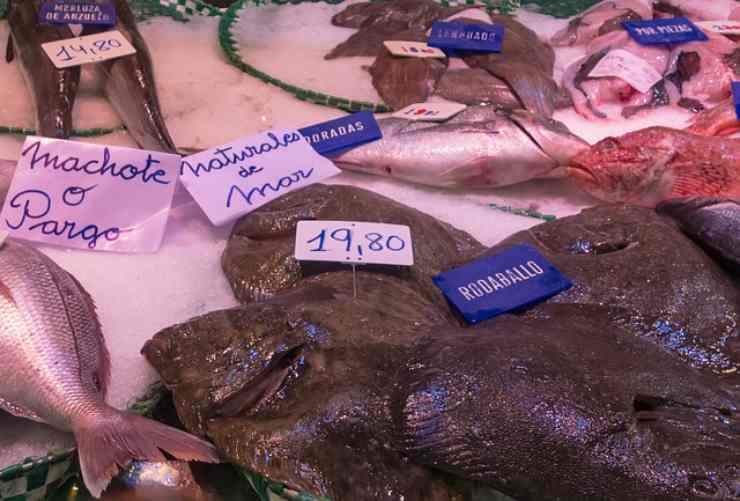 riconoscere il pesce