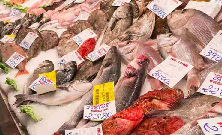 Come far mangiare pesce bimbi