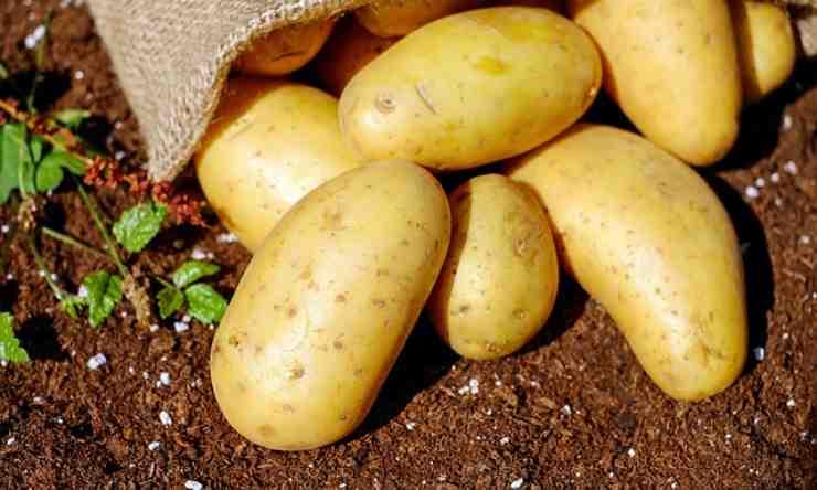 patate bollirle buccia