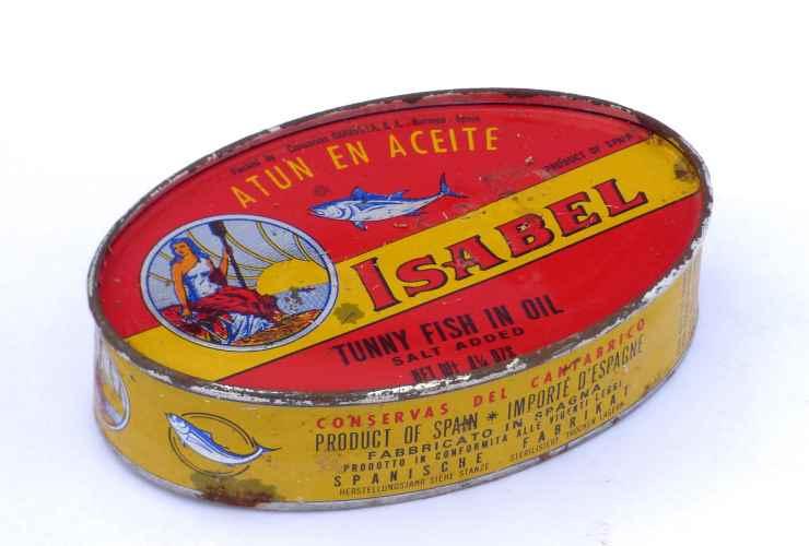 scatoletta di tonno