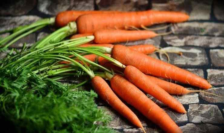 primo piatto carote
