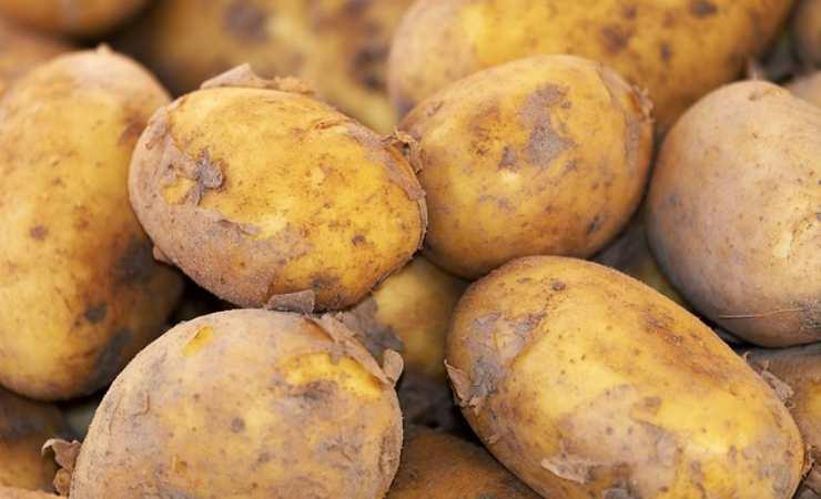 Sfoglia patate tonno