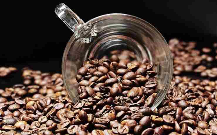 caffè ottimo