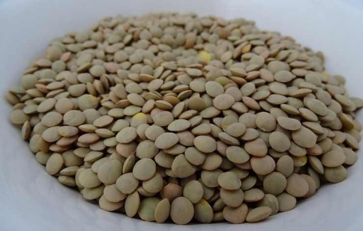 Cotoletta lenticchie