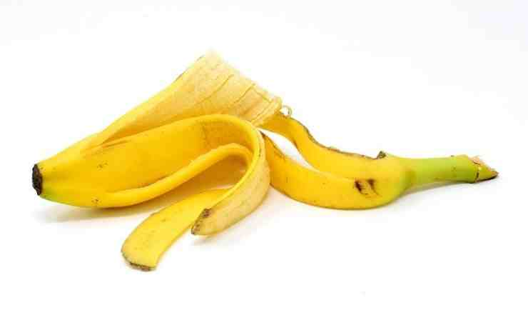 buccia banana vetro finestre